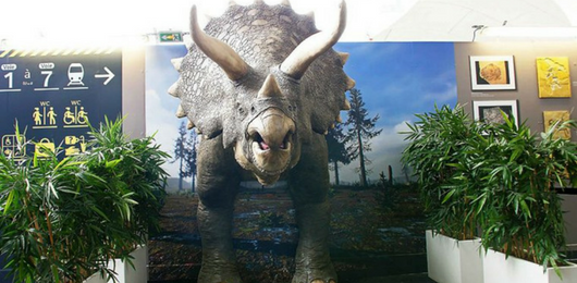 PR_Triceratops_Causes_a_Stir_in_Paris